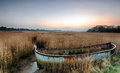 Up a creek without a paddle rusty old abandoned shipwrecked boat in reeds in the backwaters of poole harbour in dorset Stock Photo