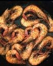Seasoned cajun shrimp in a cast iron skillet Royalty Free Stock Photo