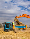 Uploading earth industrial truck loader excavator moving and into a truck Royalty Free Stock Image