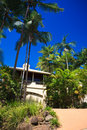 Upmarket tropical villa view up the driveway of a double storey surrounded by tall palm trees Royalty Free Stock Images
