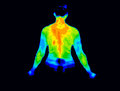 Upper body thermography Royalty Free Stock Photo