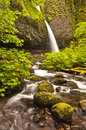 Upper ponytail falls Royalty Free Stock Photo