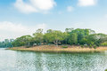 Upper seletar water reservior at the area in singapore Royalty Free Stock Images