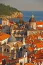 Upper view of dubrovnik old town with palm tree and sea Stock Photography