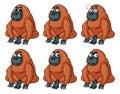 Urangutan with different emotions