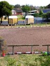 Urban Equestrian 2 Stock Photos