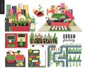 Urban farming and gardening set