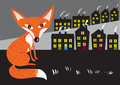 Urban fox Royalty Free Stock Photo