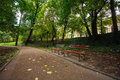 Urban green park with walking paths Royalty Free Stock Photo
