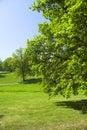Urban park - springtime Stock Image