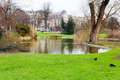 Urban pond paris green grass around spring Royalty Free Stock Photography