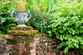 Urn on top of a wall an old brick covered with moss and surrounded by plants Stock Images