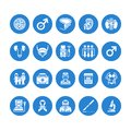 Urology vector flat glyph icons. Urologist, bladder, kidneys, adrenal glands, prostate. Medical pictograms for clinic