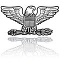 US Army eagle insignia Stock Image