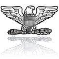 US Army eagle insignia Royalty Free Stock Photo