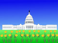 US capitol in spring Royalty Free Stock Image