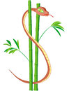 Us dollar snake in bamboo s shaped as a symbol of usd sign and wealth Royalty Free Stock Images