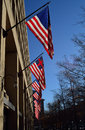 Us flags row of the united states in washington Stock Photography