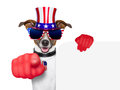 Usa american dog pointing with big finger at you Stock Image
