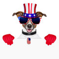 Usa american dog with red gloves behind banner Stock Photo