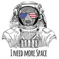 Usa flag glasses American flag United states flag Bull, bison, ox wearing space suit Wild animal astronaut Spaceman