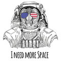 Usa flag glasses American flag United states flag Monkey, baboon, dog-ape, ape wearing space suit Wild animal astronaut