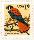 USA One Cent Postage Stamp Royalty Free Stock Photography