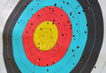 Used archery target close up Royalty Free Stock Photo