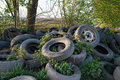 Used tires in a wood Stock Photo