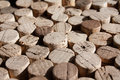 Used wine corks collection of with one of them standing out of the others Royalty Free Stock Photography