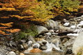Ushuaia creek flowing water in the in in fall Royalty Free Stock Photos