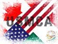 USMCA United States Mexico Canada Agreement Treaty - 2d Illustration