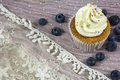 Usual vanilla cupcake with white cream with many blueberries Royalty Free Stock Photo