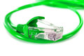 Utp network cable green wire Royalty Free Stock Images