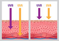 UV , uv a and uv b protection Royalty Free Stock Photo