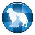 Vétérinaire medical symbol button Images stock