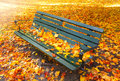 Vacant park bench in autumn photo of a Royalty Free Stock Image