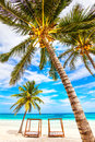 Vacations and tourism concept caribbean paradise tropical resort mexico riviera maya Royalty Free Stock Image