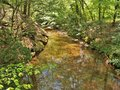 Stream at Vade Mecum Hanging Rock State Park Royalty Free Stock Photo