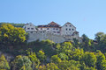 Vaduz castle in liechtenstein beautiful Stock Images