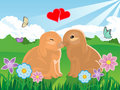 Valentine Bunny Couple Stock Images