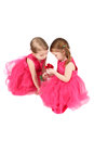 Valentine girls two little in pink dresses holding a red rose Royalty Free Stock Photo