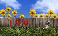 Valentine Graffiti Fence Royalty Free Stock Photos