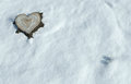 Valentine heart shaped tree trunk in the snow lots of copy space conceptual design Stock Photo