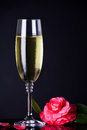Valentine s champagne glass of with flower for day Stock Image