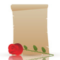 Valentine s day parchment romantic empty or old scroll with red rose for Stock Images