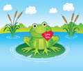 Valentine s frog cartoon illustration of a cute sitting on a lily pad in a pond holding a day heart in its mouth with the words Stock Photos