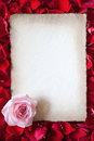 Valentines card with paper on rose petals antique style sheet of lies a bed of red a pink blossom in the lower edge Stock Photography