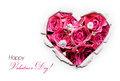 Valentines day card paper hole ripped in shape heart with rose hot pink roses inside Stock Photography