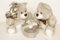 Valentines day card teddy bears stock photos couple with gift box Royalty Free Stock Images